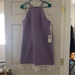 lauren james olivia dress in lilac